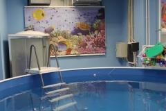 Детский акваклуб «Царевна»